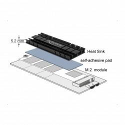 Pasivni hladilnik za M.2 NVMe SSD 70mm Delock